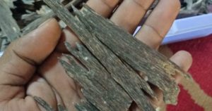 Agarwood High Grade Pure Agarwood – AgarOudhIndia