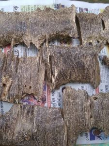 AGARWOOD POLISHED BRAND AGARCB113